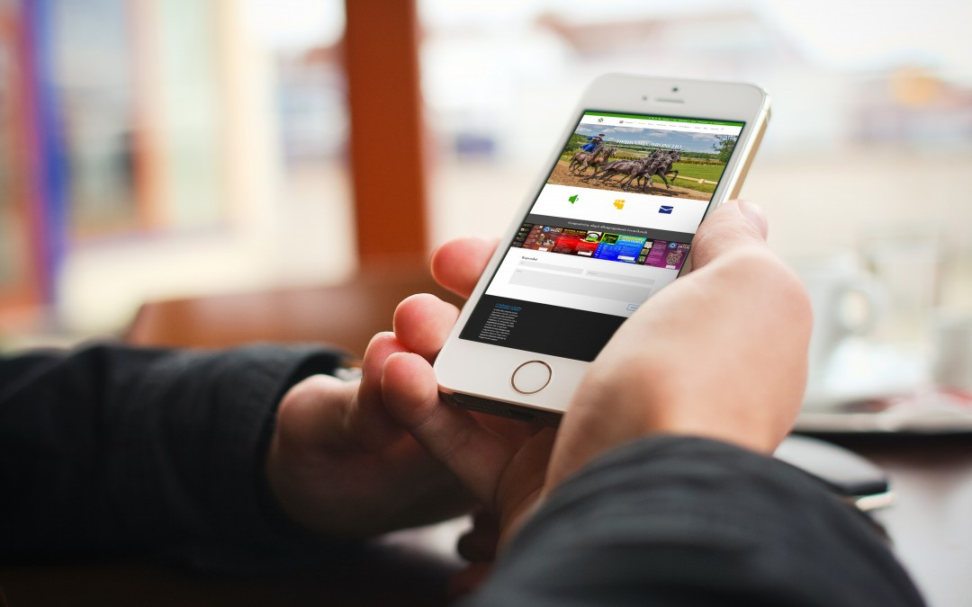 Reszponzív weboldal mobilon – gyógynövényes állatgyógyászat