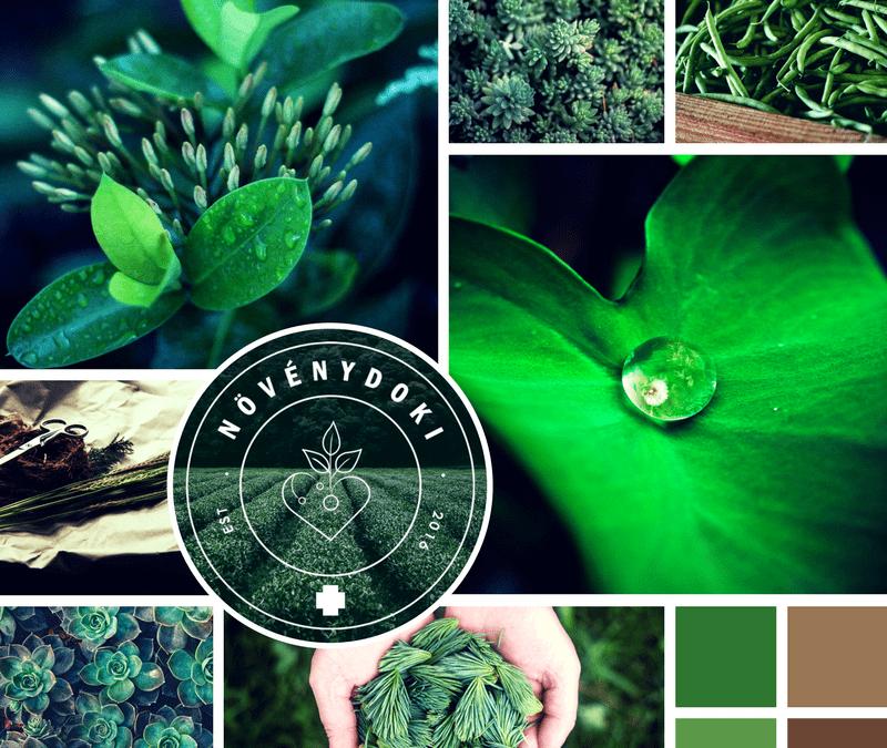 Növénydoki logó, alap arculat
