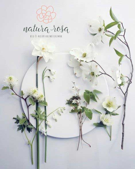 Natura-Rosa-branding-fotó-webre, Natura Rosa elsődleges logó